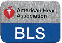 BLS Lapel Pin - Blue and Silver